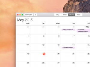 Mac OS X Calendar Screenshot